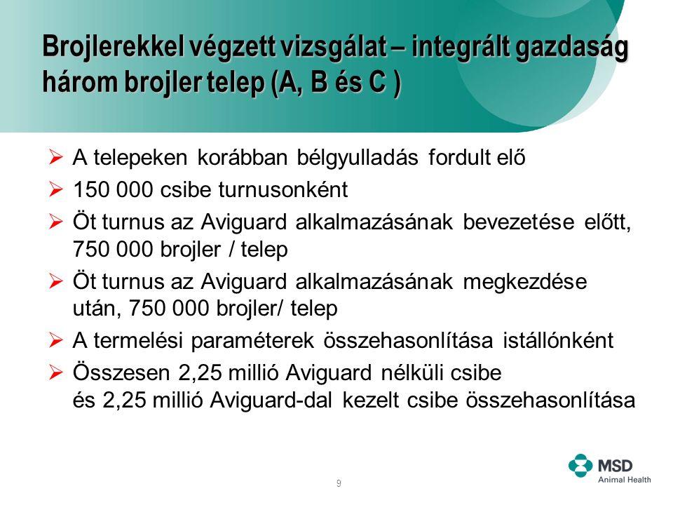 9 Brojlerekkel végzett vizsgálat – integrált gazdaság három brojler telep (A, B és C )  A telepeken korábban bélgyulladás fordult elő  150 000 csibe