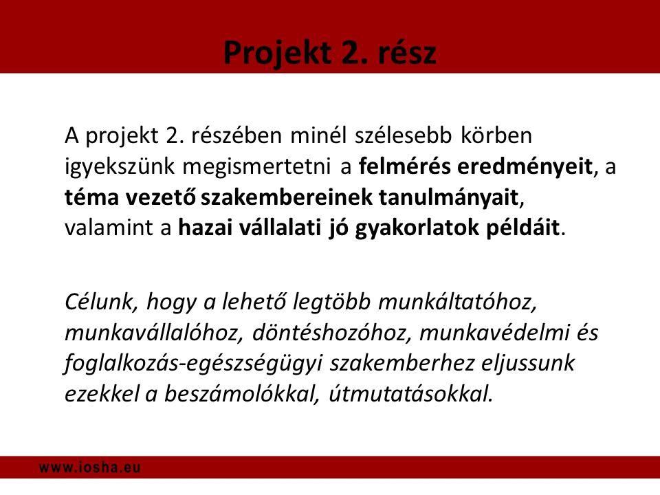 A projekt 2.