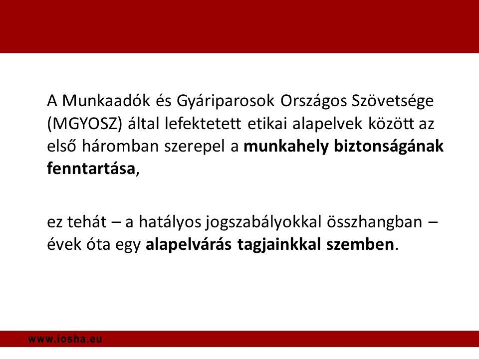 Munkáltatói visszajelzések VI.