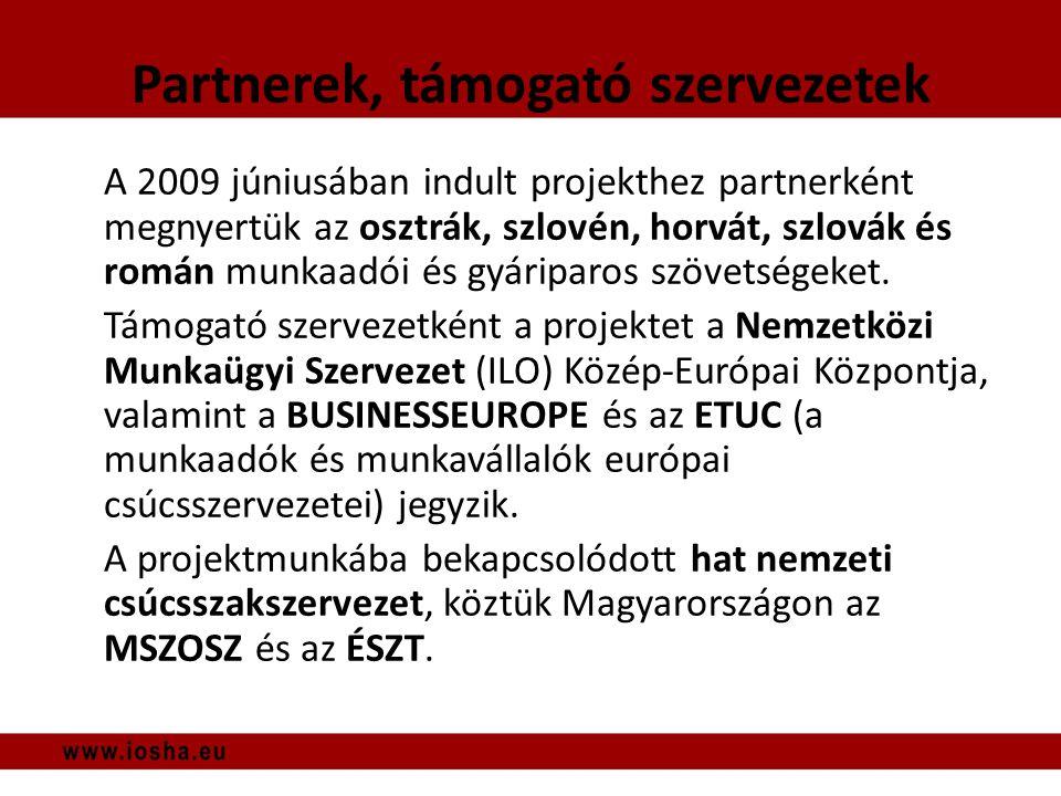Minták Munkáltatói minta: 709 fő, többnyire cégvezető Munkavállalói minta: 381 fő (5 országból), többnyire munkavédelmi képviselő • Legnagyobb számban magyar vállalatok, legkisebb arányban román vállalatok válaszoltak mindkét kérdőívnél.
