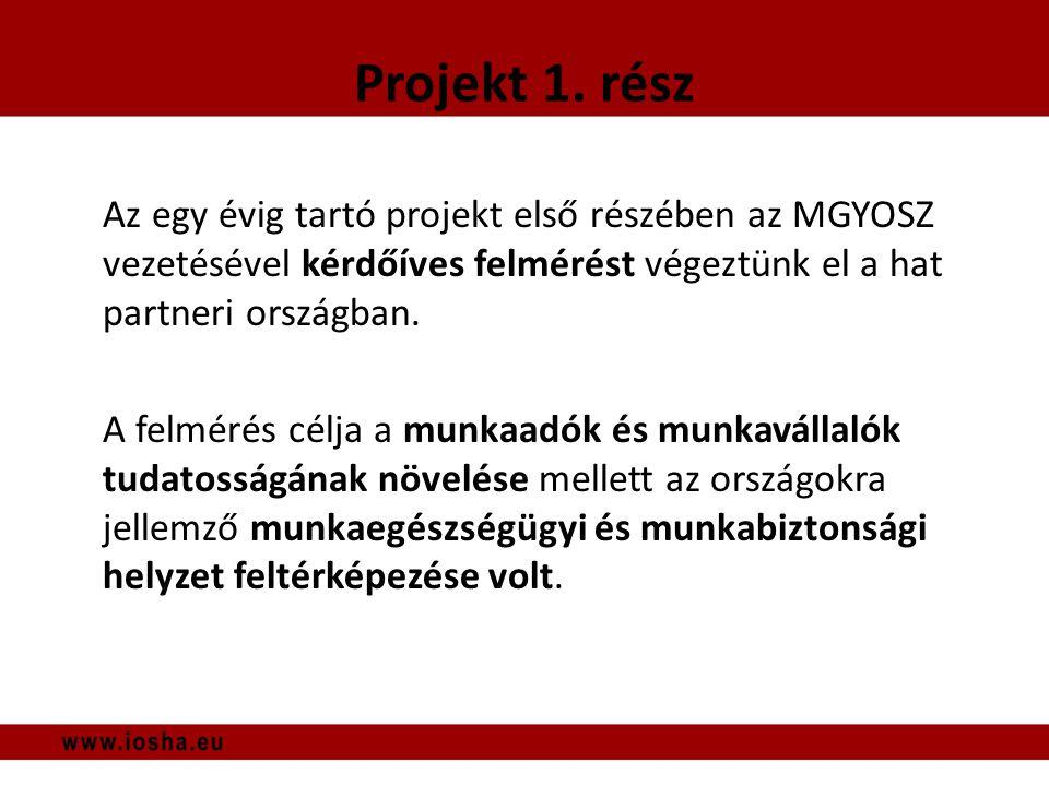 Munkavállalói visszajelzések IV.
