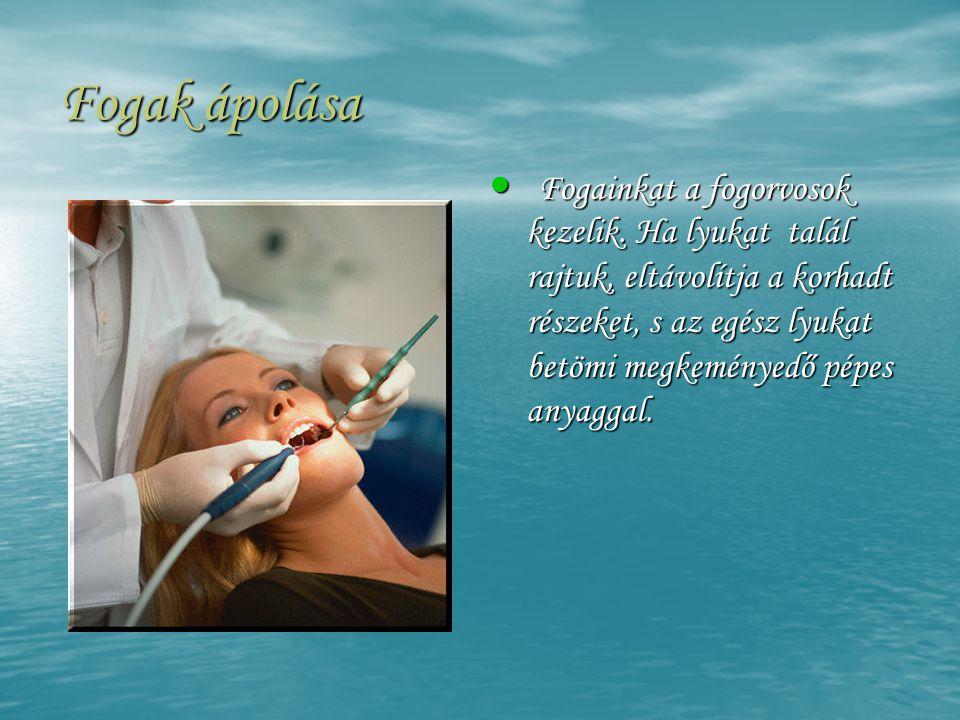 Fogak ápolása • Fogainkat a fogorvosok kezelik. Ha lyukat talál rajtuk, eltávolítja a korhadt részeket, s az egész lyukat betömi megkeményedő pépes an