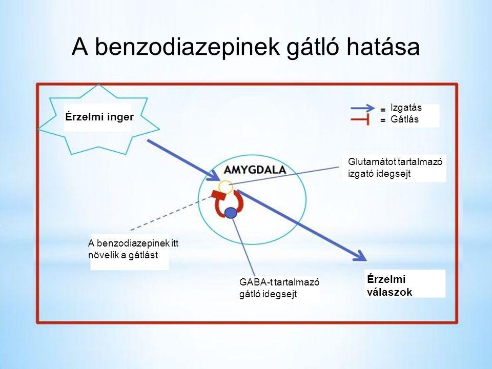 A benzodiazepinek gátló hatása Érzelmi inger A benzodiazepinek itt növelik a gátlást Izgatás Gátlás Glutamátot tartalmazó izgató idegsejt Érzelmi válaszok GABA-t tartalmazó gátló idegsejt