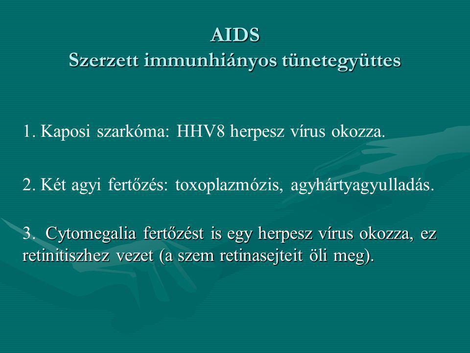 AIDS Szerzett immunhiányos tünetegyüttes 1. Kaposi szarkóma: HHV8 herpesz vírus okozza. 2. Két agyi fertőzés: toxoplazmózis, agyhártyagyulladás. Cytom