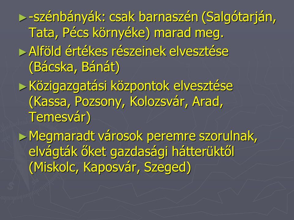 ► -szénbányák: csak barnaszén (Salgótarján, Tata, Pécs környéke) marad meg. ► Alföld értékes részeinek elvesztése (Bácska, Bánát) ► Közigazgatási közp