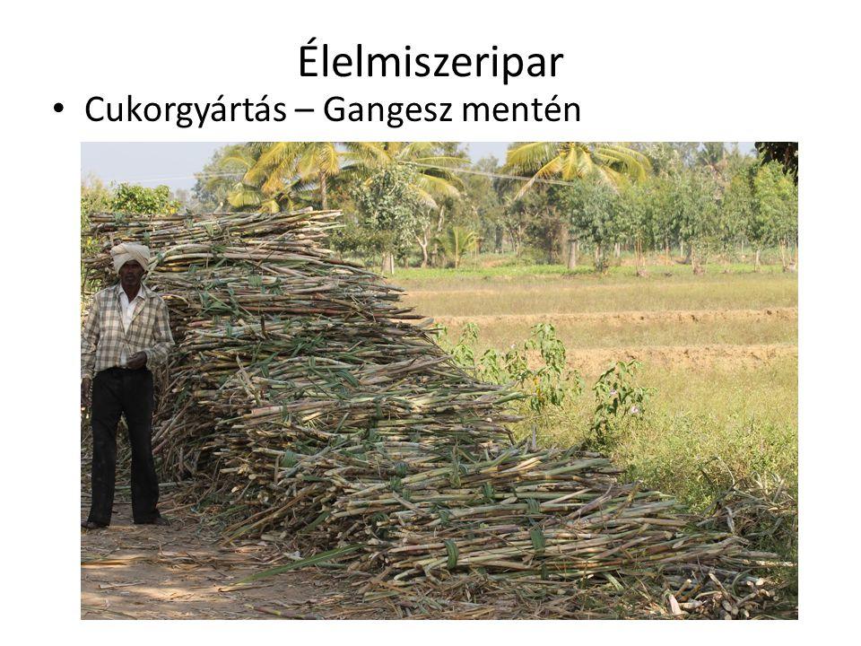 Élelmiszeripar • Cukorgyártás – Gangesz mentén