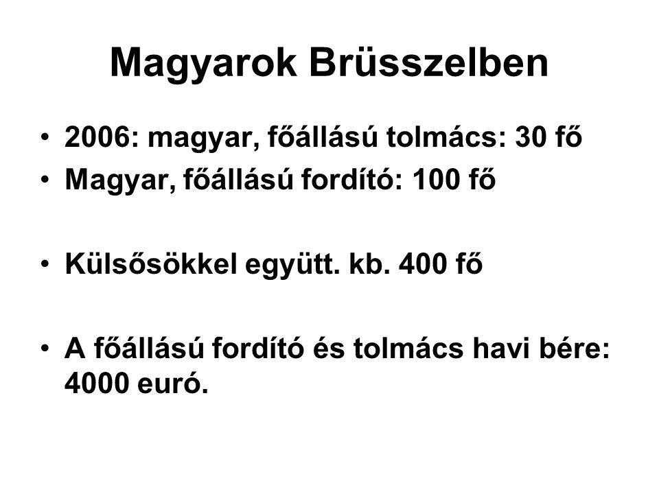Magyarok Brüsszelben •2006: magyar, főállású tolmács: 30 fő •Magyar, főállású fordító: 100 fő •Külsősökkel együtt.