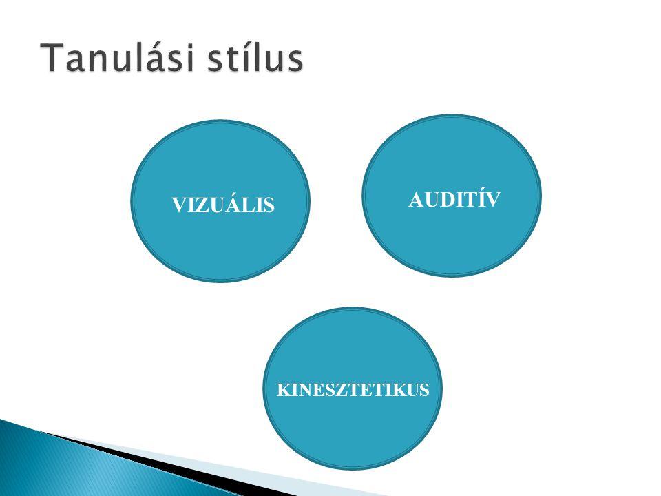 AUDITÍV VIZUÁLIS KINESZTETIKUS