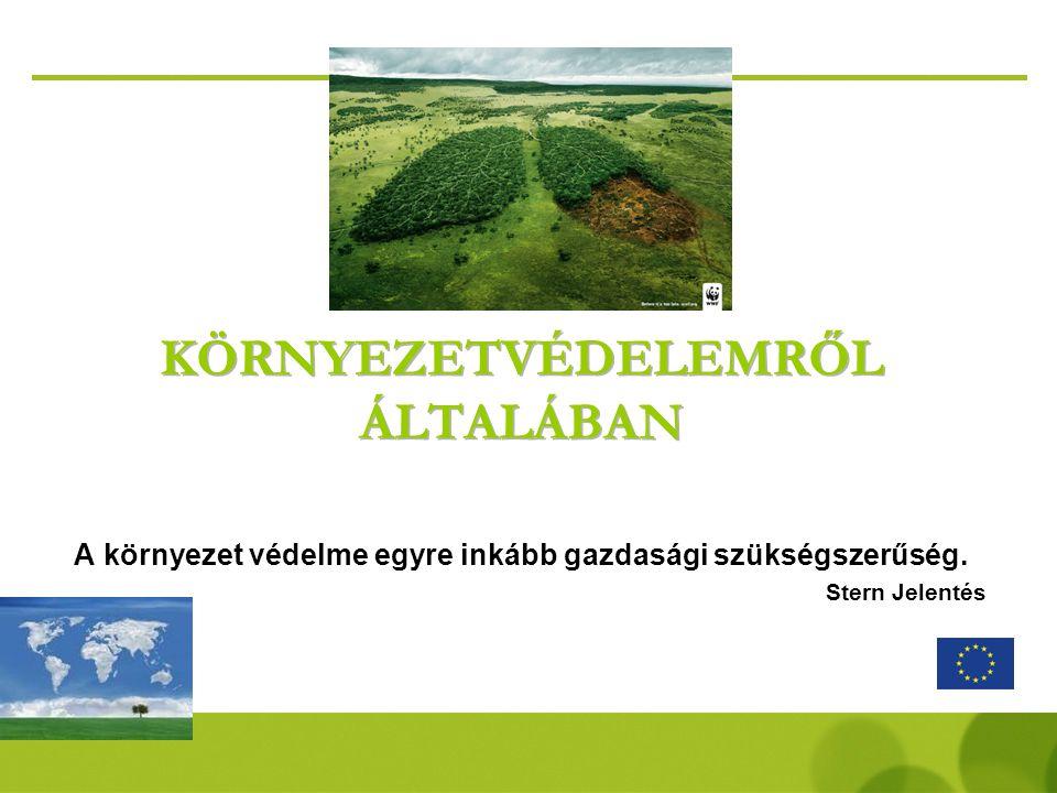 A környezetvédelmi világpiac… Az ökotechnológiák világpiacának nagysága 2005-ben 1000 milliárd euró volt