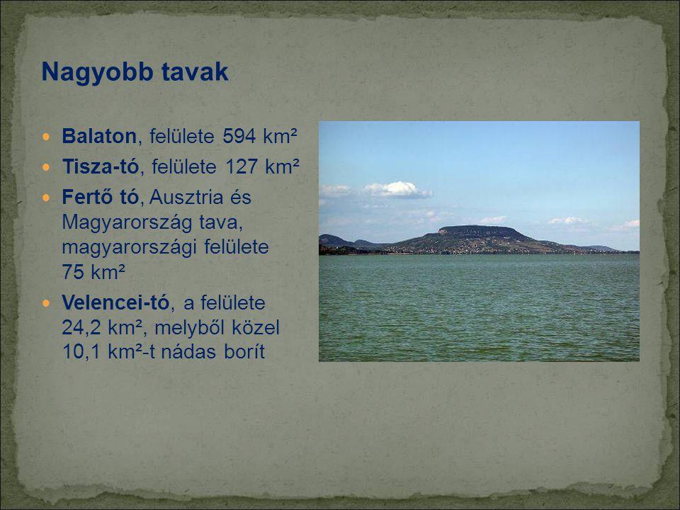 Nagyobb tavak  Balaton, felülete 594 km²  Tisza-tó, felülete 127 km²  Fertő tó, Ausztria és Magyarország tava, magyarországi felülete 75 km²  Velencei-tó, a felülete 24,2 km², melyből közel 10,1 km²-t nádas borít