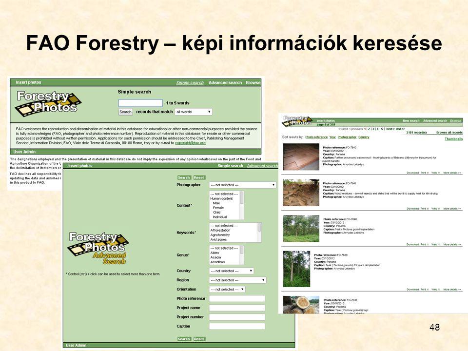 FAO Forestry – képi információk keresése 48