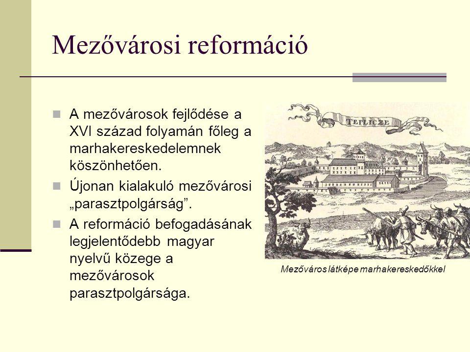 Mezővárosi reformáció  A mezővárosok fejlődése a XVI század folyamán főleg a marhakereskedelemnek köszönhetően.