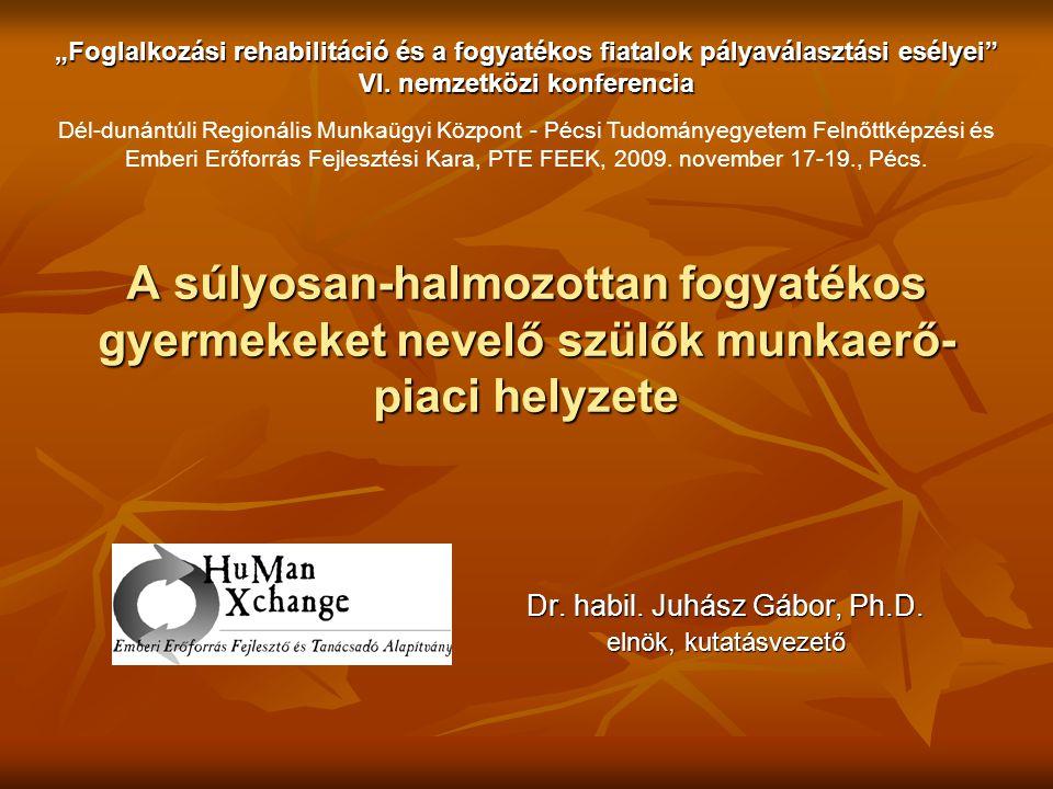 """A súlyosan-halmozottan fogyatékos gyermekeket nevelő szülők munkaerő- piaci helyzete Dr. habil. Juhász Gábor, Ph.D. elnök, kutatásvezető """"Foglalkozási"""