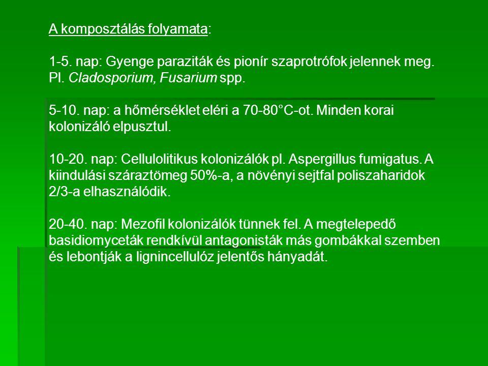 A komposztálás folyamata: 1-5. nap: Gyenge paraziták és pionír szaprotrófok jelennek meg. Pl. Cladosporium, Fusarium spp. 5-10. nap: a hőmérséklet elé