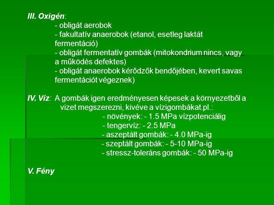 III. Oxigén: - obligát aerobok - fakultatív anaerobok (etanol, esetleg laktát fermentáció) - obligát fermentatív gombák (mitokondrium nincs, vagy a mű