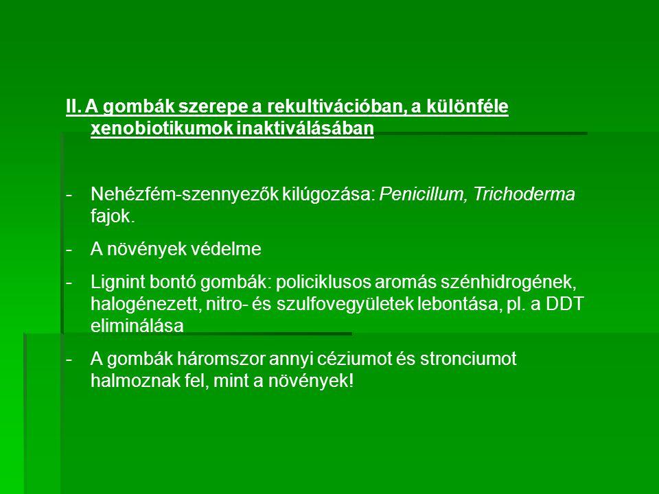 II. A gombák szerepe a rekultivációban, a különféle xenobiotikumok inaktiválásában -Nehézfém-szennyezők kilúgozása: Penicillum, Trichoderma fajok. -A