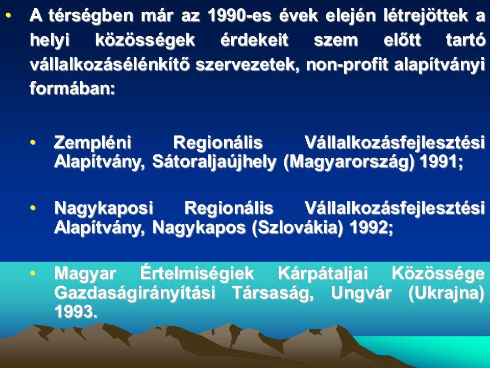 •A térségben már az 1990-es évek elején létrejöttek a helyi közösségek érdekeit szem előtt tartó vállalkozásélénkítő szervezetek, non-profit alapítványi formában: •Zempléni Regionális Vállalkozásfejlesztési Alapítvány, Sátoraljaújhely (Magyarország) 1991; •Nagykaposi Regionális Vállalkozásfejlesztési Alapítvány, Nagykapos (Szlovákia) 1992; •Magyar Értelmiségiek Kárpátaljai Közössége Gazdaságirányítási Társaság, Ungvár (Ukrajna) 1993.