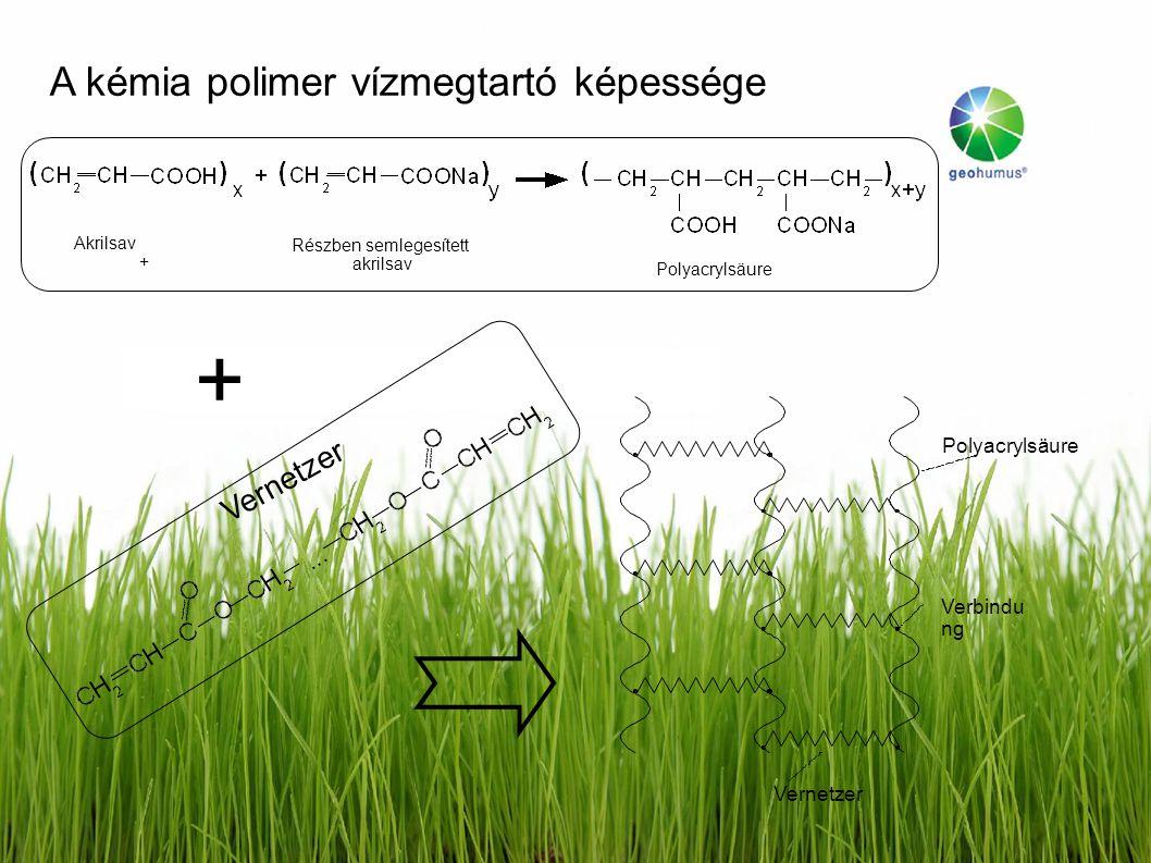 Vernetzer Polyacrylsäure Verbindu ng Akrilsav + Részben semlegesített akrilsav Polyacrylsäure + Vernetzer A kémia polimer vízmegtartó képessége