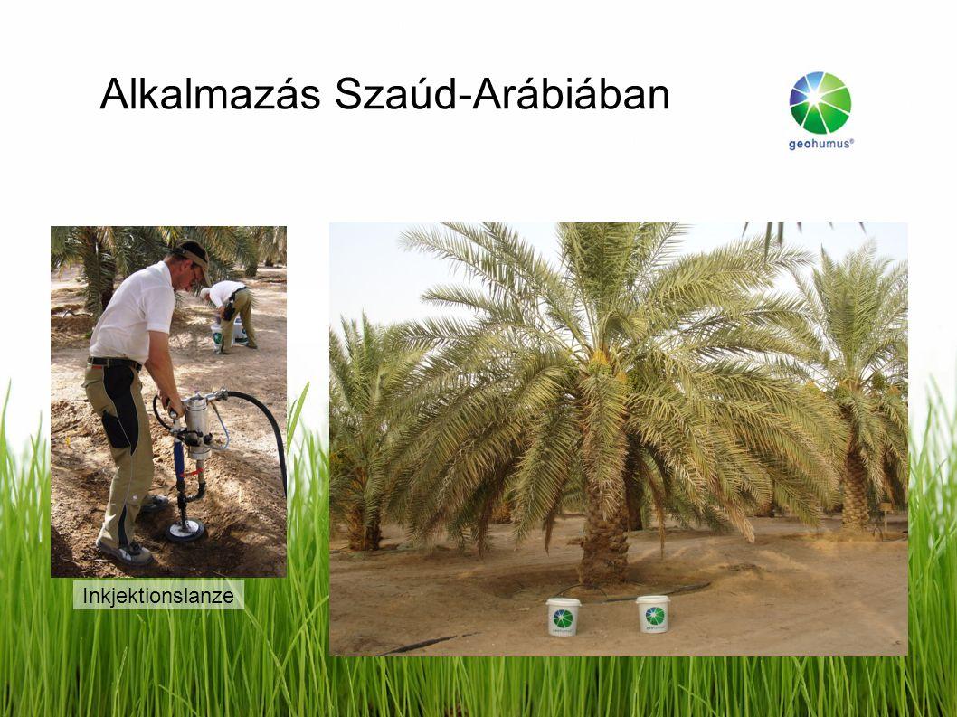 Alkalmazás Szaúd-Arábiában Inkjektionslanze