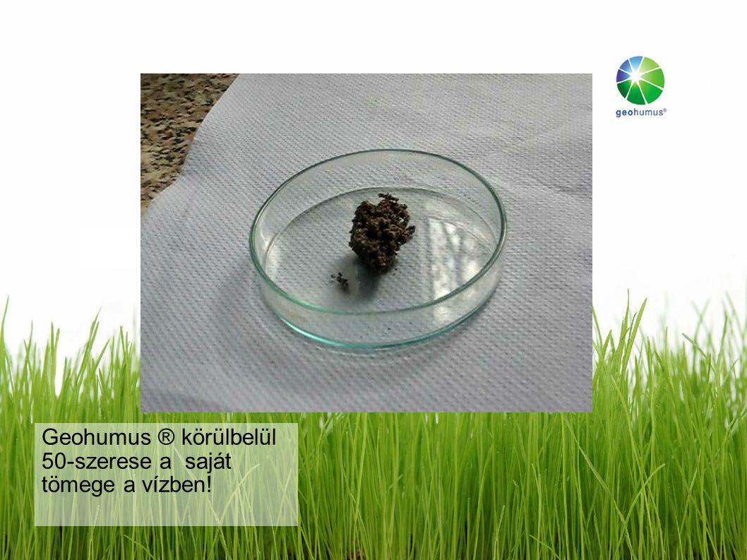 Kísérletek a University of Giessen