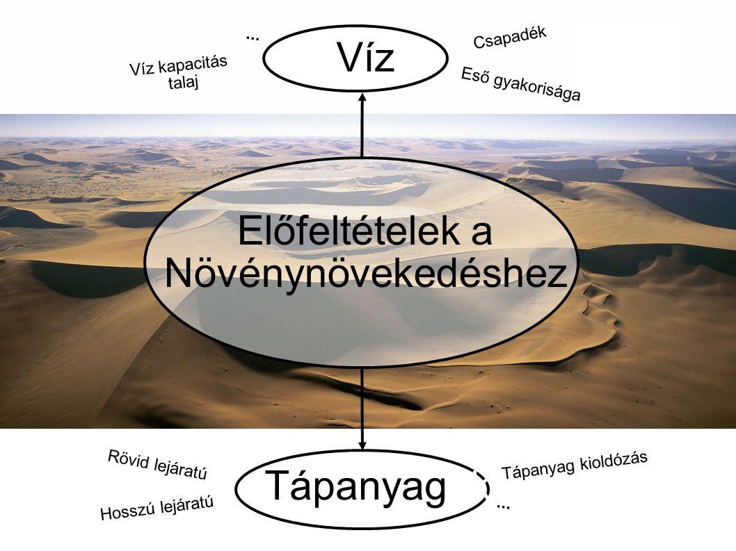 Geohumus ® Tárolt Víz Rendelkezésre álló Tápanyagok Víz kapacitás javul a talajban Megakadályozza a víz csökkenését Az esővizet jobban tárolja a talajban mint bármi más Öntözés időközönként meghosszabbítható Tartalmazza a rövid közép és hosszú távon rendelkezésre álló tápanyagok Csökkenti a műtrágyák mennyiségét Kombinálja / koncentrálja a tápanyagot és a víz