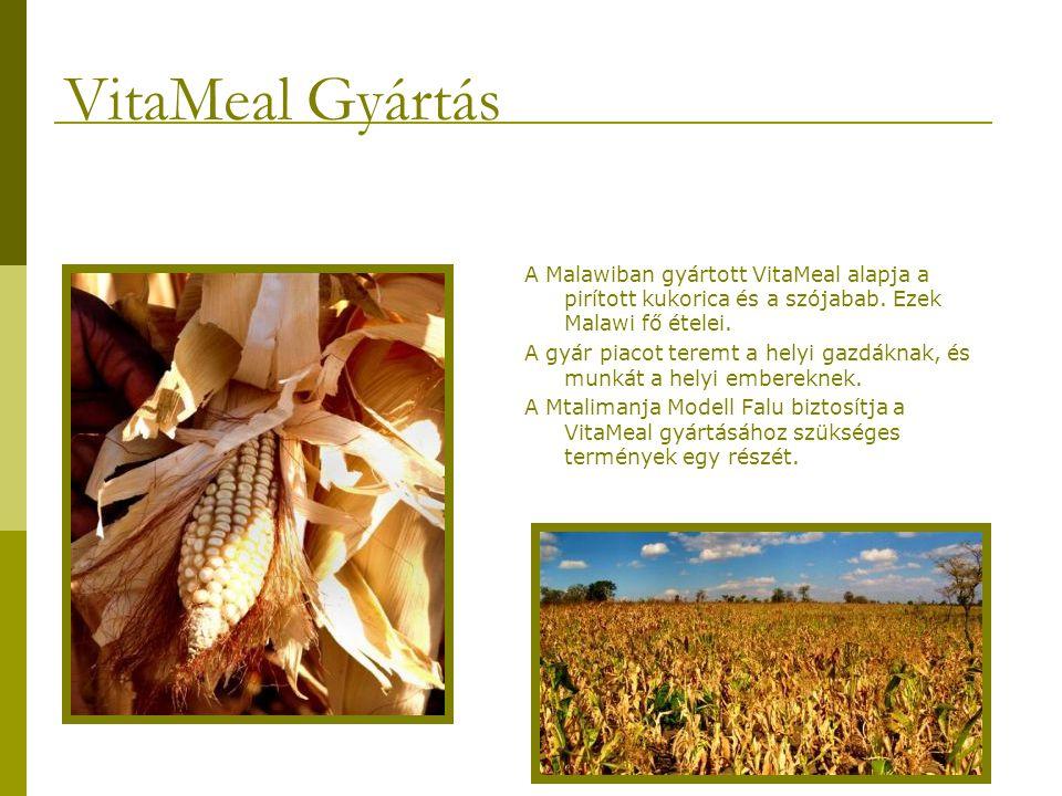 A Malawiban gyártott VitaMeal alapja a pirított kukorica és a szójabab.