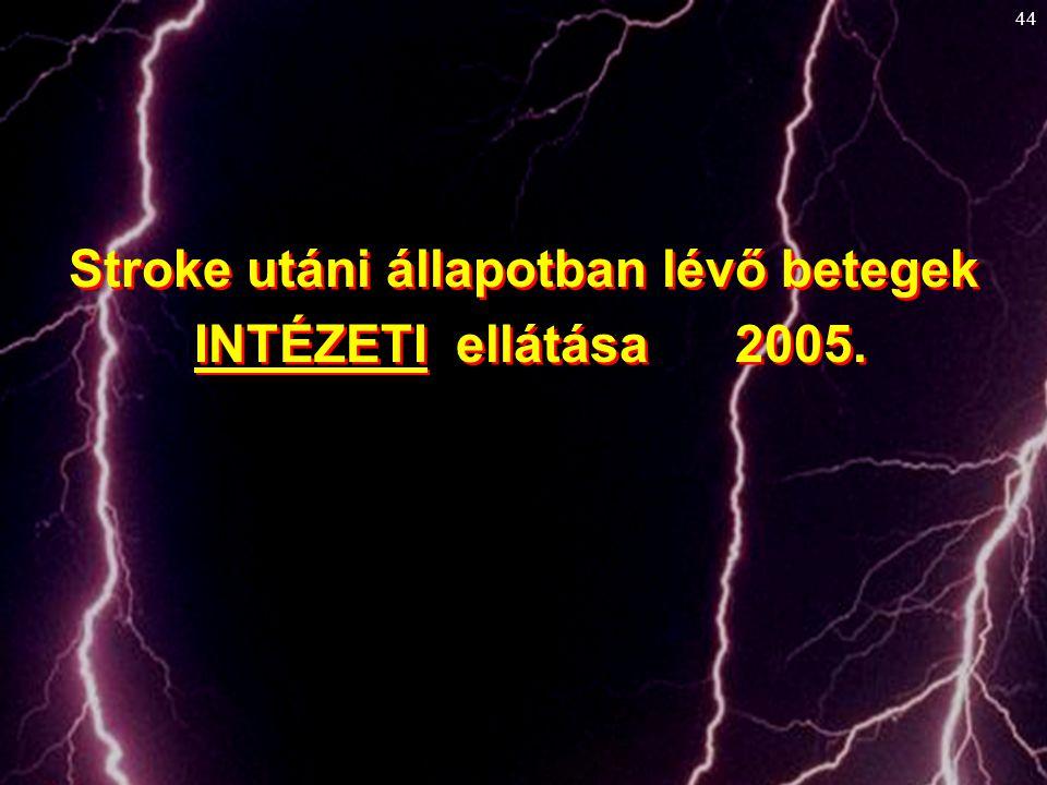 44 Stroke utáni állapotban lévő betegek INTÉZETI ellátása 2005. Stroke utáni állapotban lévő betegek INTÉZETI ellátása 2005.