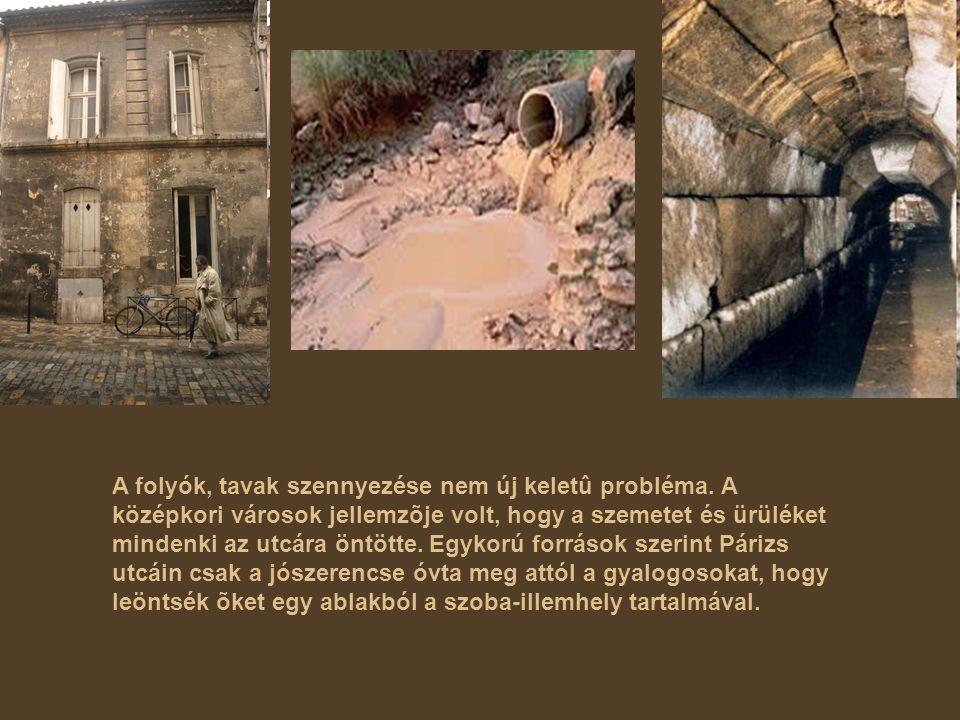 A folyók, tavak szennyezése nem új keletû probléma. A középkori városok jellemzõje volt, hogy a szemetet és ürüléket mindenki az utcára öntötte. Egyko