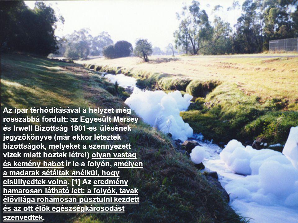 •De létezik egy kevésbé látványos, ám nagyon veszélyes szennyezési módja is: ez a hõszennyezés, az a víz hõmérsékletének emelése valamilyen módon.
