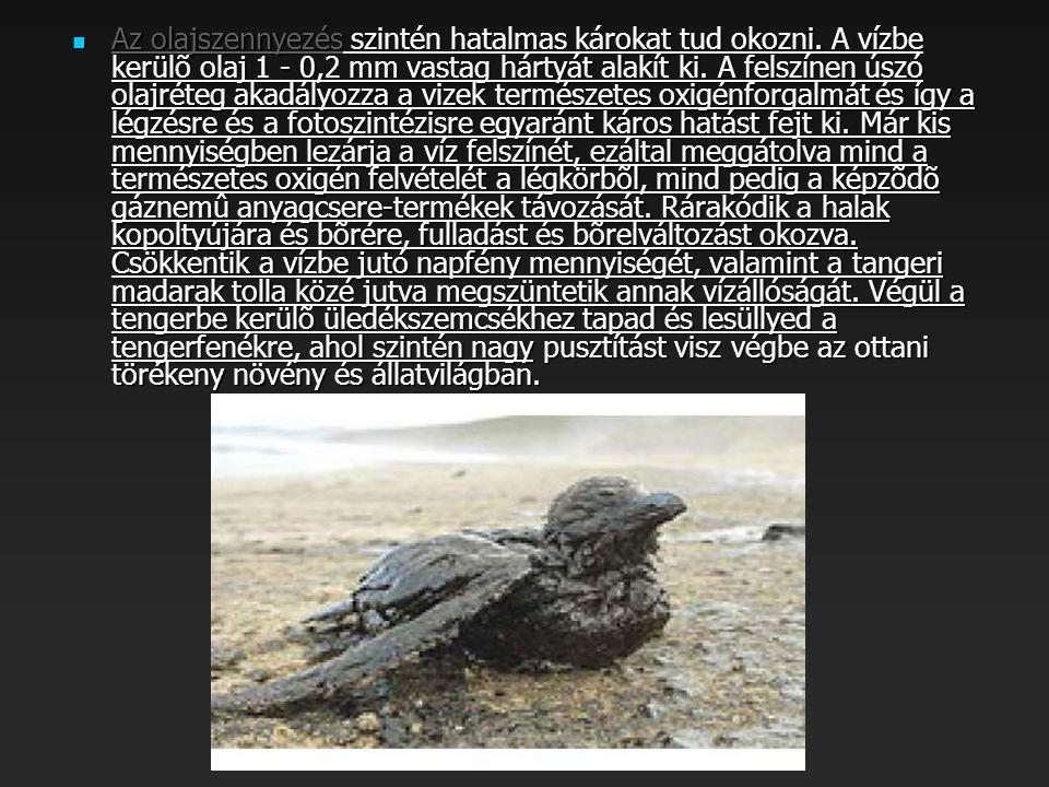  Az olajszennyezés szintén hatalmas károkat tud okozni.