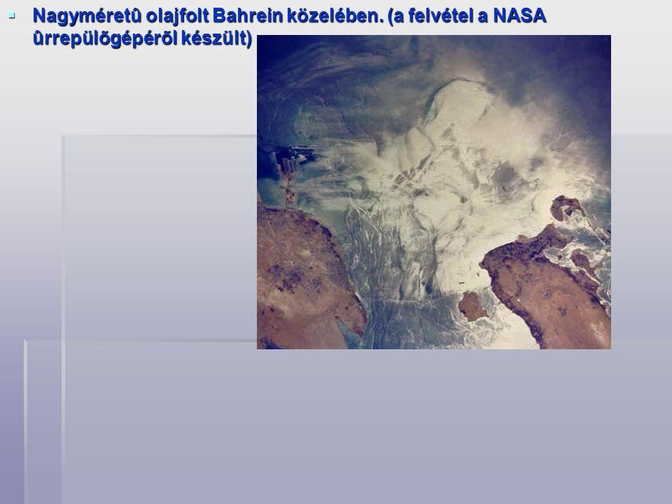  Nagyméretû olajfolt Bahrein közelében. (a felvétel a NASA ûrrepülõgépérõl készült)