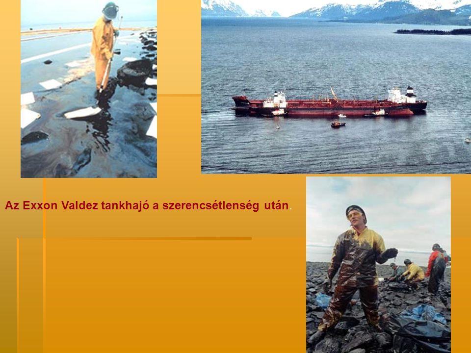 Az Exxon Valdez tankhajó a szerencsétlenség után.