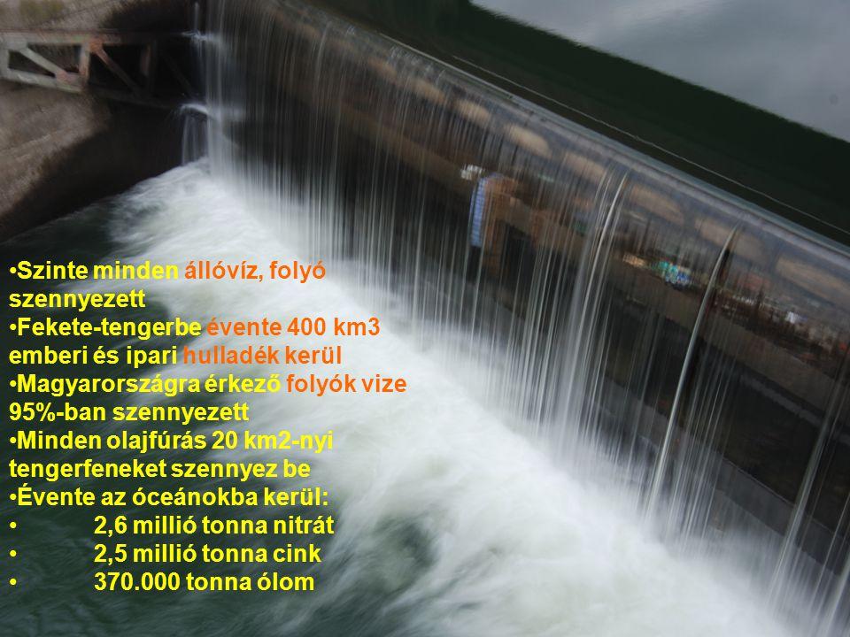 •Szinte minden állóvíz, folyó szennyezett •Fekete-tengerbe évente 400 km3 emberi és ipari hulladék kerül •Magyarországra érkező folyók vize 95%-ban sz