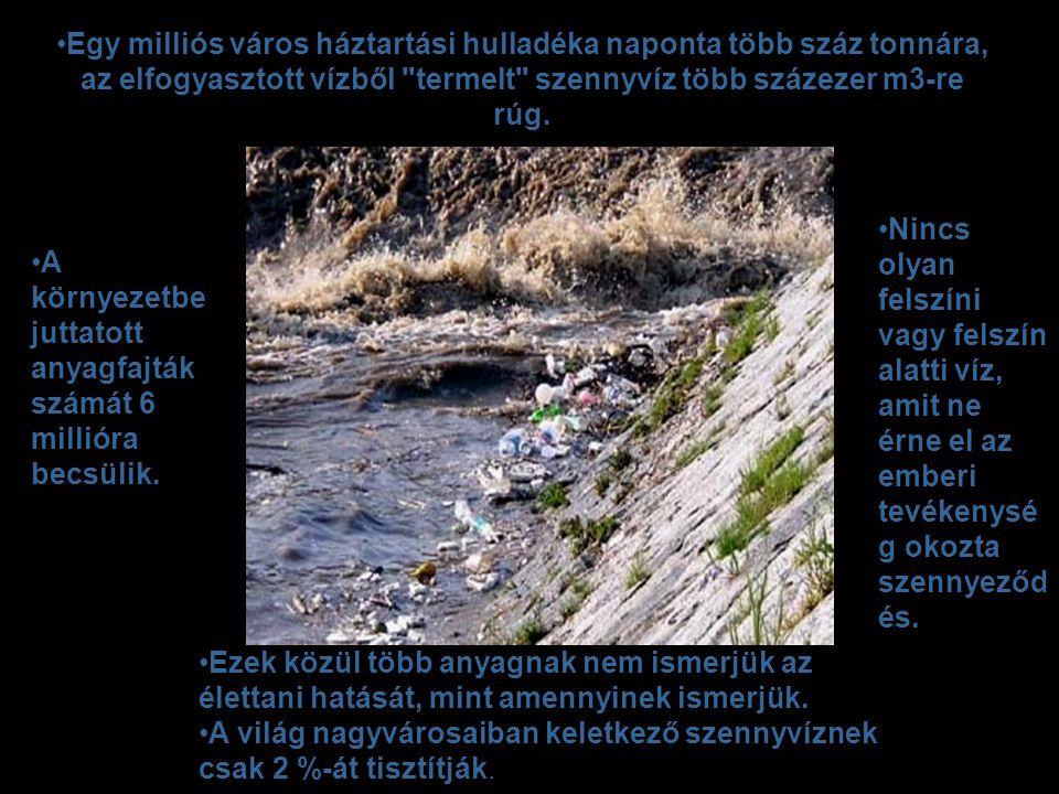 •Egy milliós város háztartási hulladéka naponta több száz tonnára, az elfogyasztott vízből