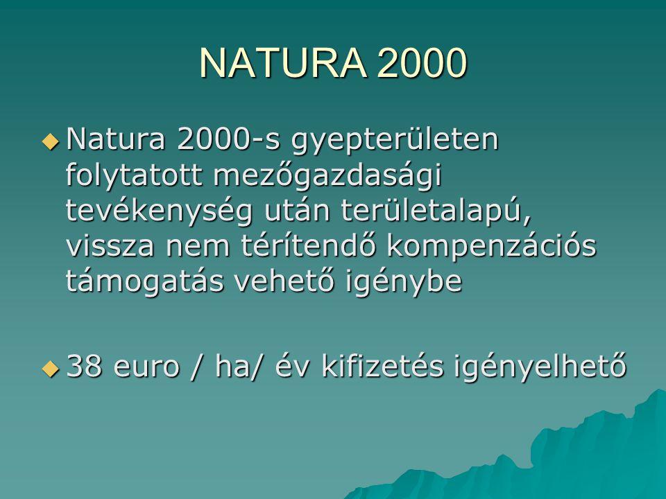NATURA 2000  Natura 2000-s gyepterületen folytatott mezőgazdasági tevékenység után területalapú, vissza nem térítendő kompenzációs támogatás vehető i