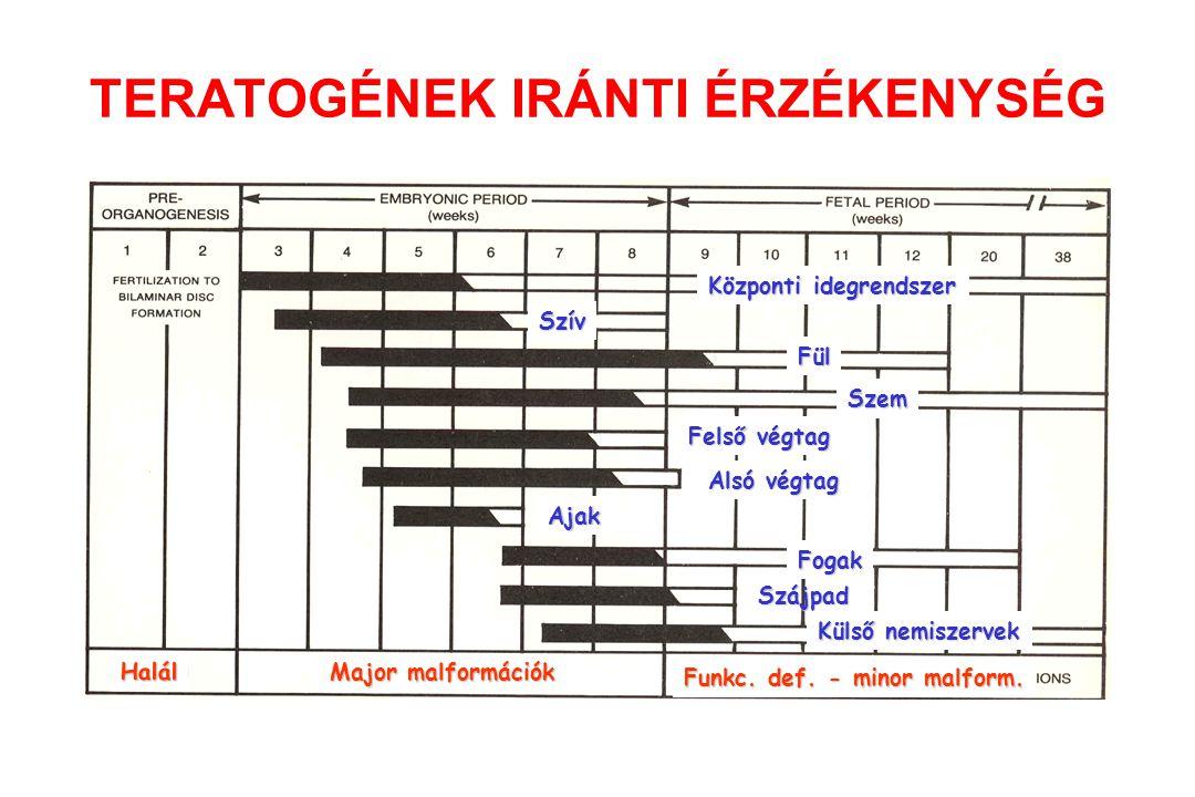 A különböző szervtelepek eltérő érzékenységi periódusa Tetraciklin: - az anya kezelése a 120.