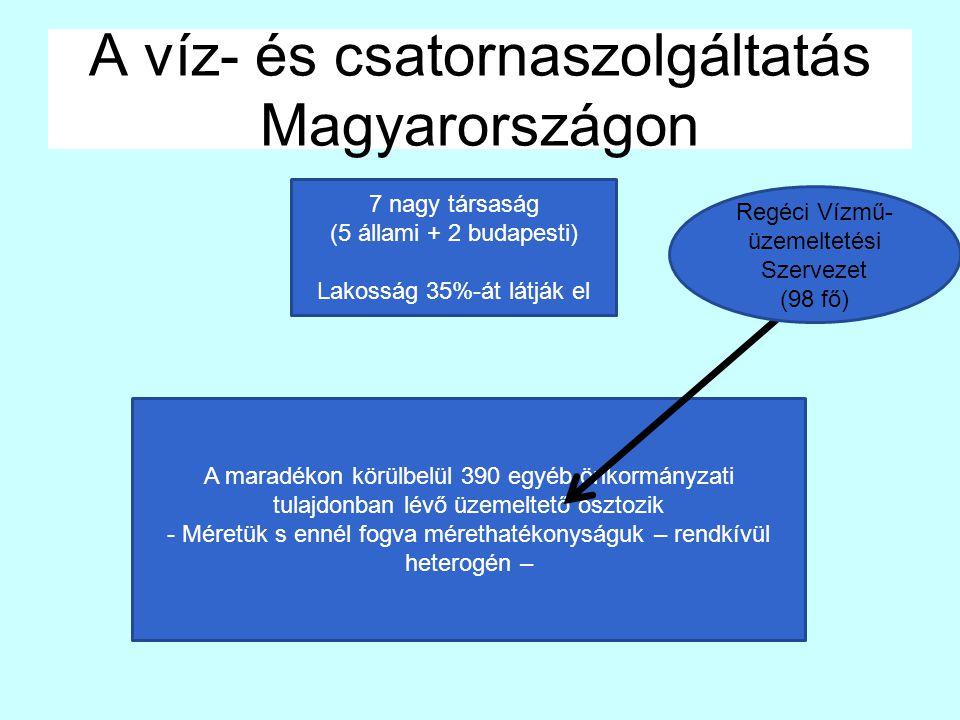 A víz- és csatornaszolgáltatás Magyarországon 7 nagy társaság (5 állami + 2 budapesti) Lakosság 35%-át látják el A maradékon körülbelül 390 egyéb önkormányzati tulajdonban lévő üzemeltető osztozik - Méretük s ennél fogva mérethatékonyságuk – rendkívül heterogén – Regéci Vízmű- üzemeltetési Szervezet (98 fő)