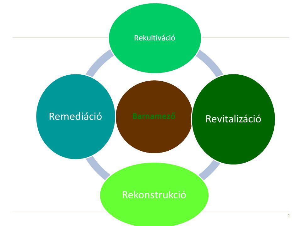 3 • Rekultiváció= újraművelés, mg-i vagy erdészeti művelésre alkalmassá tétel (bányaterületek, hulladéklerakók) • Revitalizáció= újra élővé tétel mérnökbiológiai módszerekkel az élettér visszaállítása (vízfolyások, városrészek) • Rehabilitáció = helyreállítás (városi funkciók eredeti állapotának visszaállítása) • Reorganizáció = újra szervez, (vállalkozások, városrészek) • Reaktiválás = újra működésbe hoz, (terület újrahasznosítás az új funkciónak megfelelően) • Rekonstrukció = újraépítés (épületek, műemlékek, városrészek) • Remediáció = kármentesítés
