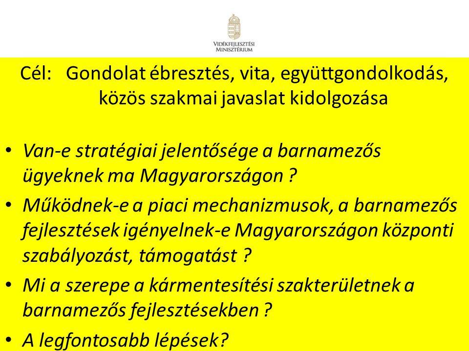 7 A Kormány 2345/2004.(XII. 26.) Korm. Határozata a 2003-2008.
