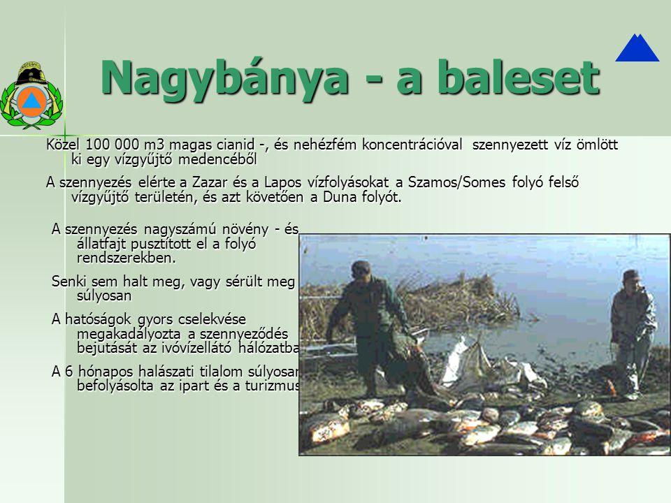 Nagybánya - a baleset A szennyezés nagyszámú növény - és állatfajt pusztított el a folyó rendszerekben. Senki sem halt meg, vagy sérült meg súlyosan A