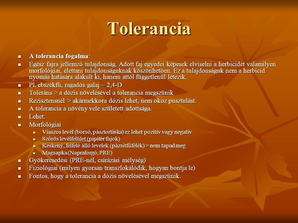 Tolerancia  A tolerancia fogalma:  Egész fajra jellemző tulajdonság. Adott faj egyedei képesek elviselni a herbicidet valamilyen morfológiai, életta