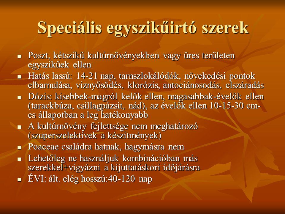 Speciális egyszikűirtó szerek  Poszt, kétszikű kultúrnövényekben vagy üres területen egyszikűek ellen  Hatás lassú: 14-21 nap, tarnszlokálódók, növe