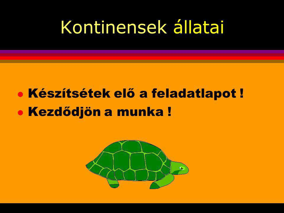 Kontinensek állatai l Project-hét KKI-Darány l Készítette: Cseresznyés Géza l 2003.november l Felső -tagozat