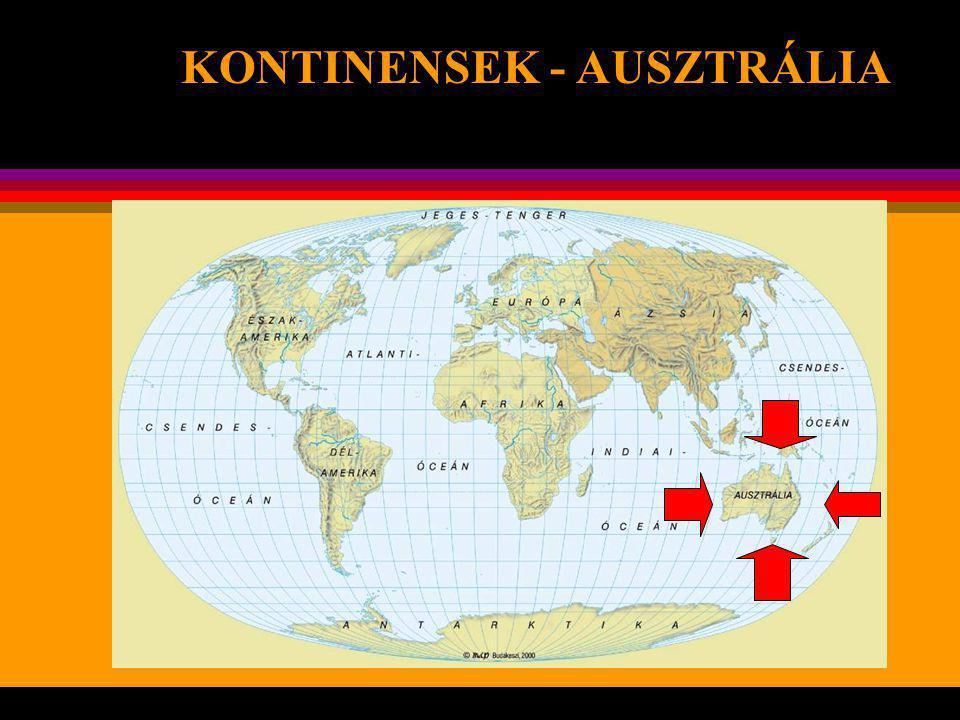 Az Antarktiszon él rendkívül sajátos része bolygónknak – földrajzi, természeti és egyéb szempontból egyaránt.