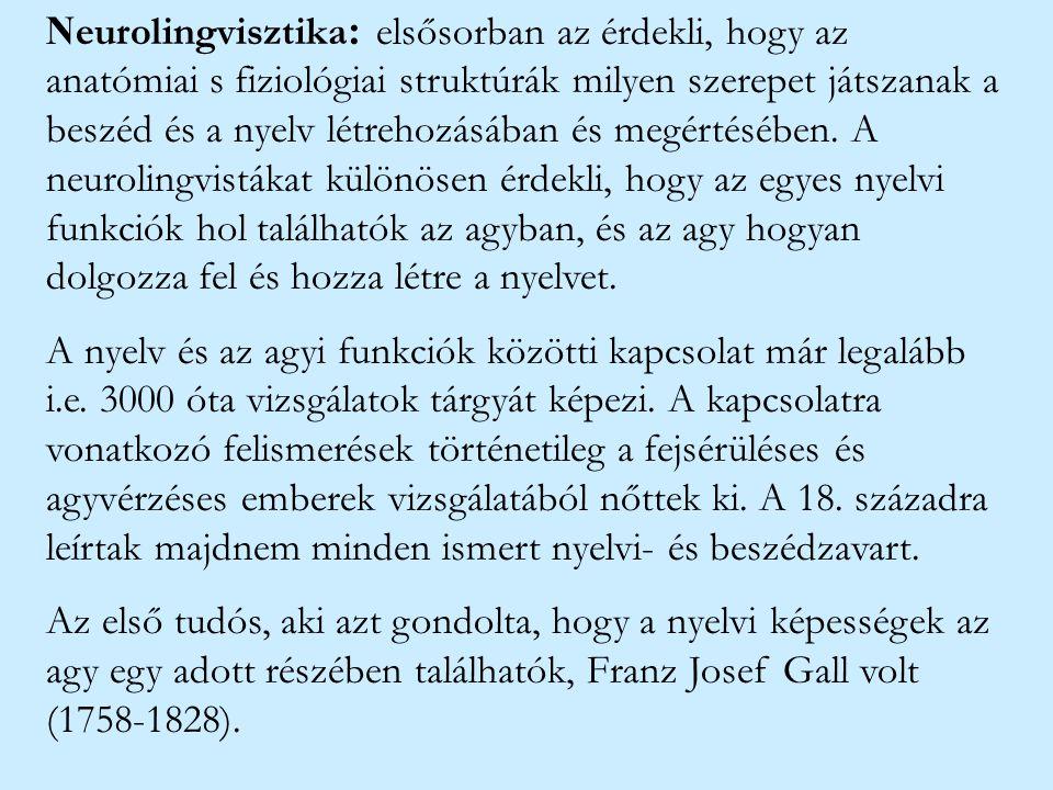 N eurolingvisztika : elsősorban az érdekli, hogy az anatómiai s fiziológiai struktúrák milyen szerepet játszanak a beszéd és a nyelv létrehozásában és