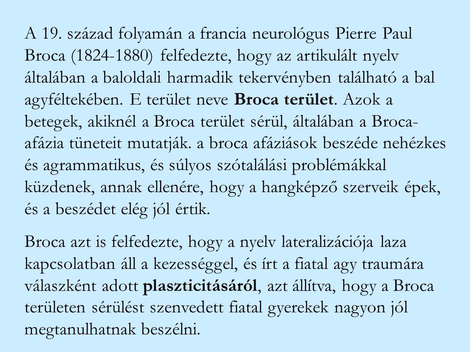 A 19. század folyamán a francia neurológus Pierre Paul Broca (1824-1880) felfedezte, hogy az artikulált nyelv általában a baloldali harmadik tekervény