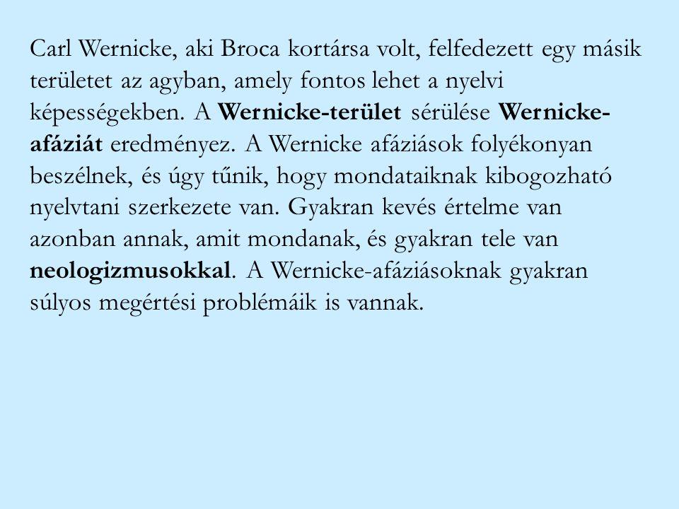 Carl Wernicke, aki Broca kortársa volt, felfedezett egy másik területet az agyban, amely fontos lehet a nyelvi képességekben. A Wernicke-terület sérül