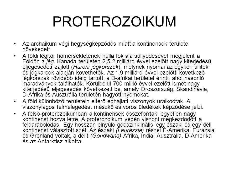 PROTEROZOIKUM •Az archaikum végi hegységképződés miatt a kontinensek területe növekedett. •A földi légkör hőmérsékletének nulla fok alá süllyedésével
