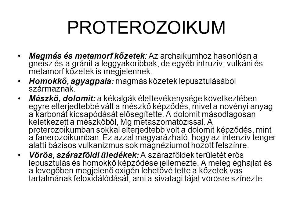 PROTEROZOIKUM •Magmás és metamorf kőzetek: Az archaikumhoz hasonlóan a gneisz és a gránit a leggyakoribbak, de egyéb intruziv, vulkáni és metamorf kőz