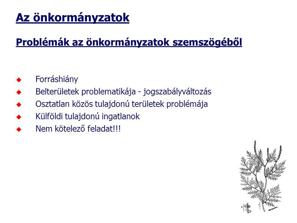 Az önkormányzatok Problémák az önkormányzatok szemszögéből  Forráshiány  Belterületek problematikája - jogszabályváltozás  Osztatlan közös tulajdonú területek problémája  Külföldi tulajdonú ingatlanok  Nem kötelező feladat!!!